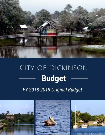 FY19 Budget Cover-Adopted small
